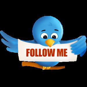 twitter_bird_5